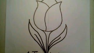 How To Draw A Tulip Flower Easy como dibujar un flor de tulipan Fun2draw