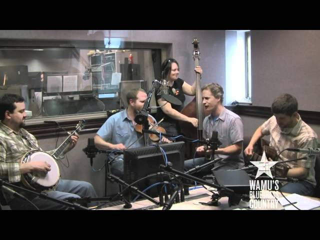 Foghorn Stringband - My Horses Ain't Hungry [Live at WAMU's Bluegrass Country]