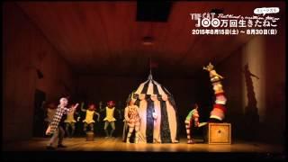 ミュージカル『100万回生きたねこ』舞台映像が届きました! 期間:2015...