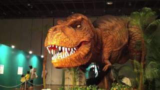 Dinosaur Kingdom -宮城よみがえる大恐竜王国-