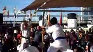 Karate Baseball Bat Break
