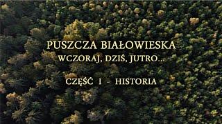 Puszcza Białowieska. Wczoraj, dziś i jutro. Część 1 - HISTORIA