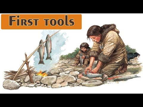 First Tools