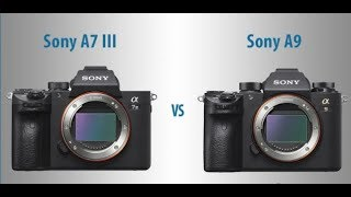 Sony a9 vs a7iii long term review Mirrorless comparison review webs...
