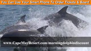 Cape May Dolphin Whale Watching Cape May Boat Tours Coupons