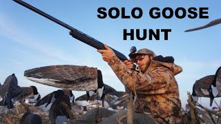 solo-goose-hunting-was-it-worth-setting-55-dozen-decoys-by-myself
