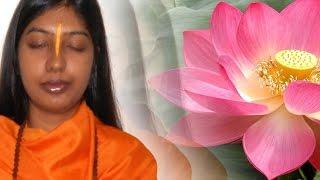 How to do Bhakti & Vairagya in Kaliyug - Hindi Satsang Pravachan