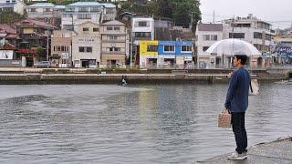 杉山(沢村一樹)は元船具屋で古い写真の中から、ひときわ美しい女性を...