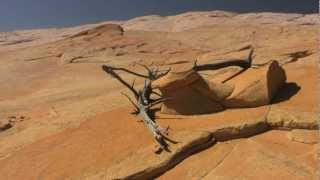 Yellow Rock - Grand Staircase Escalante