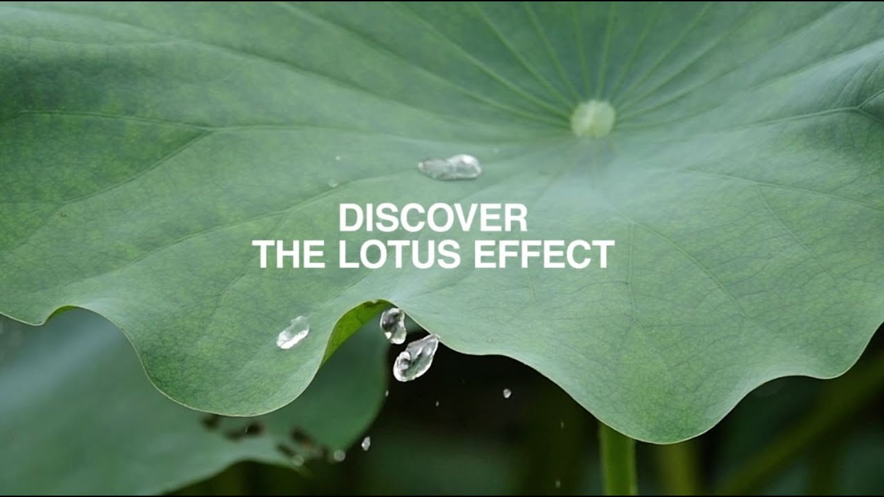 Fiber Optic Connectors With Lotus Effect Youtube