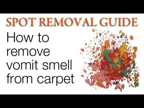 Smell of Vomit in a Carpet
