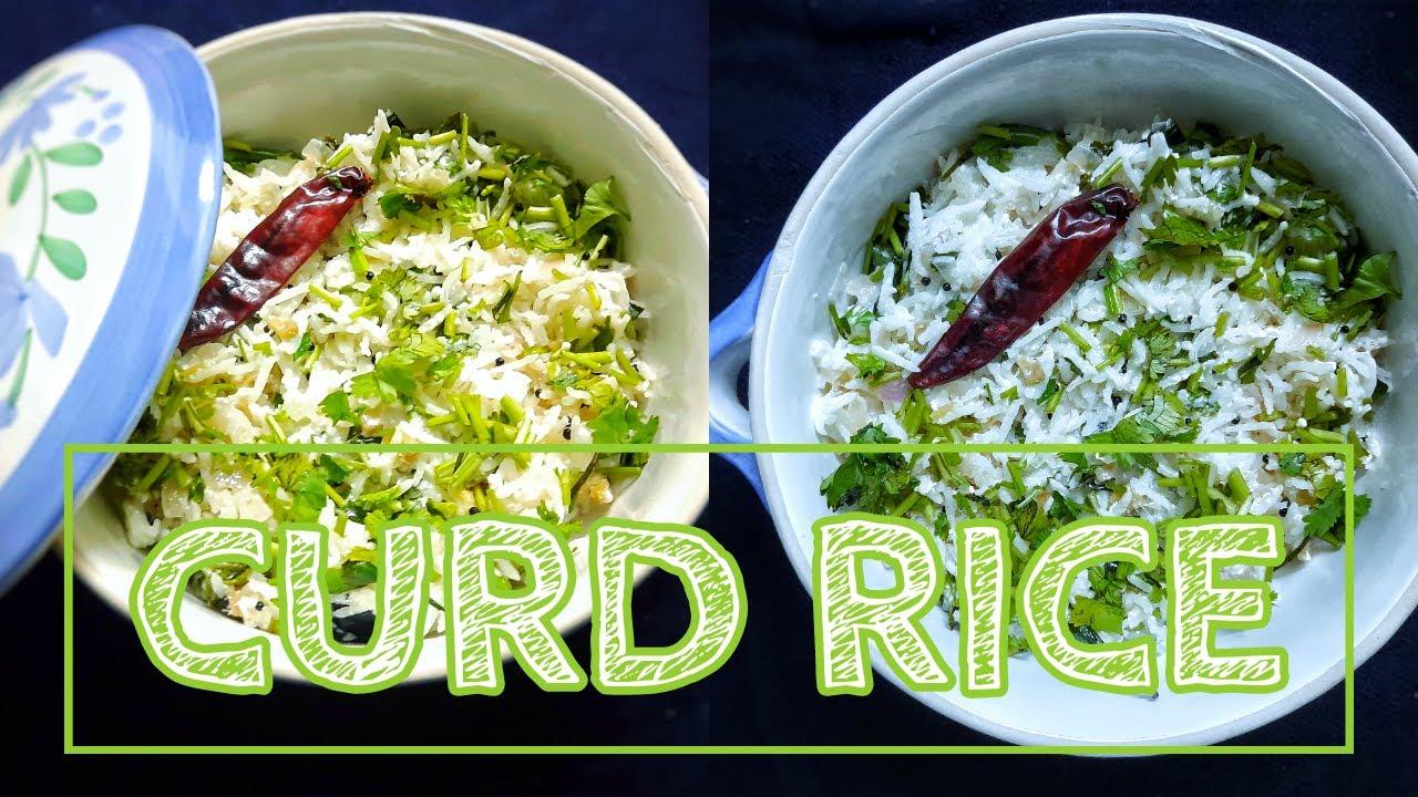 Curd Rice / दही चावल / Thayir Sadam / थायिर सदाम / Daddojanam / दद्दूजनम