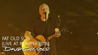 David Gilmour - Fat Old Sun (Live At Pompeii)