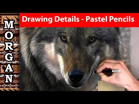 drawing-details-with-pastel-pencils---wildlife-art