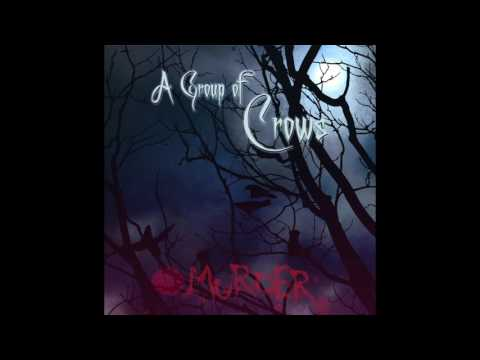 A group of crows - Murder