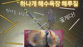 인천 무의도 하나개해수욕장 이영상보시구.. 가셔야할지..판단잘하세요^^ 도움이 되실겁니다~^^