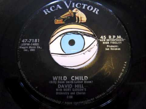 David Hill - Wild Child