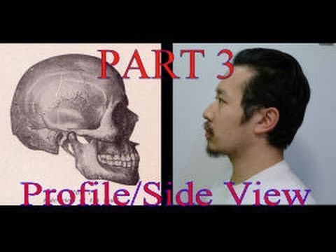 part3-face-proportions-for-portrait-drawing:-ultimate-guide-(profile-view)
