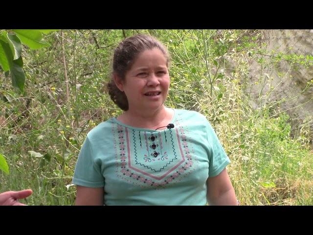 Entrevista a Eliana Videla Apicultora