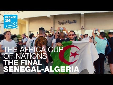 Africa Cup of Nations, Senegal - Algeria: the final!