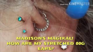 madison s magikal how are my ears doing after 0g to 00g stretch