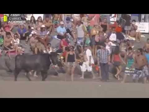 Đấu bò tót  bãi biển Tây Ban Nha -Thú vui cảm giác mạnh.