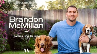 Brandon McMillan Teaches Dog Training   Official Trailer   MasterClass