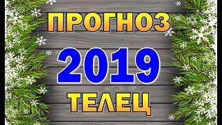 Таро прогноз (гороскоп) на 2019 год - ТЕЛЕЦ