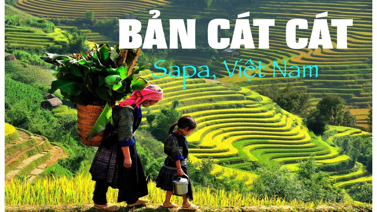 BẢN CÁT CÁT: làng người H'mông đẹp nhất Sapa, tây bắc Việt Nam.  DU LỊCH SAPA 2019