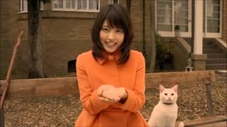 猫ちゃん、マイコちゃんて言うですけど。ずっとお座りしてすごくかわいかったです。と有村架純さん。有村さんもすごくかわいらしですね。