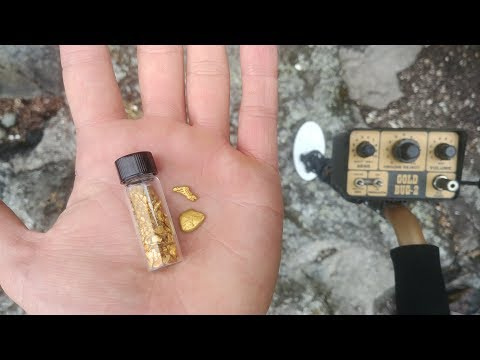 FINDING GOLD NUGGETS WITH A METAL DETECTOR!