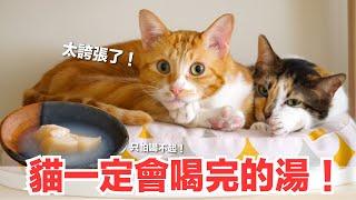 好味小姐-做了一碗貓咪一定超愛的湯-只是會被喝垮-好味貓鮮食廚房-ep176
