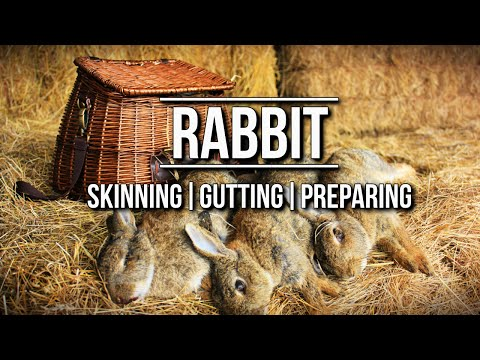How To Skin A Rabbit | TA Outdoors