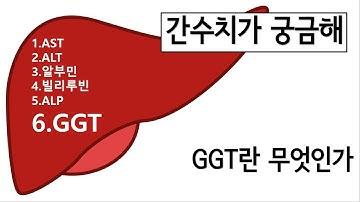 간수치 (간기능검사) - GGT(감마지티피)란 무엇인가?
