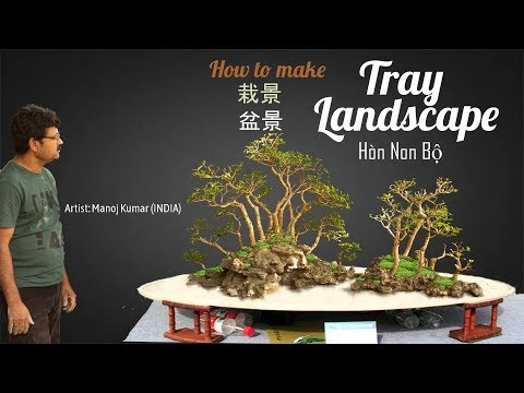 How To Create Premna Tray Landscape Bonsai Penjing | 栽景 | 𡉕𡽫部 | 盆景 | Bonsai Master Manoj Kumar India