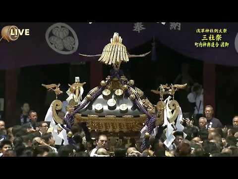 浅草神社例大祭「三社祭」町内神輿連合渡御(J:COM生放送)