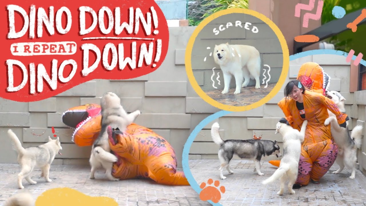 DINOSAUR PRANK TO MY DOGS GONE WRONG!! (HINDI NA AKO UULIT!)