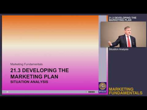 Topic 21.3 Developing the marketing plan - Situation analysis