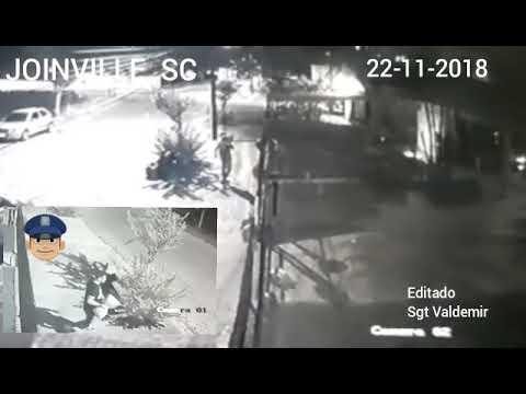 Jovem furta árvore de Natal em asilo, se arrepende e volta para devolver em Joinville