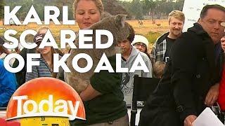 Karl is afraid of a Koala | TODAY Show Australia