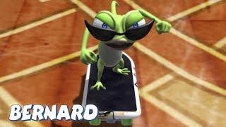 Download Bernard Bear | The Skateboard and more | 30 min Compilation | Cartoons for Children