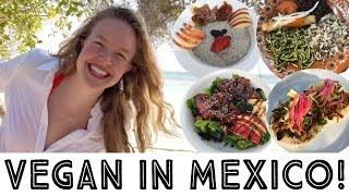connectYoutube - What I Ate As A Vegan in Mexico - Travel Vlog