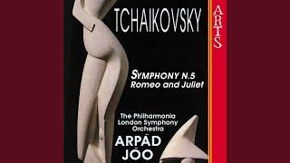 Symphony No. 5 In E Minor Op. 64: Andante Cantabile Con Alcuna Licenza