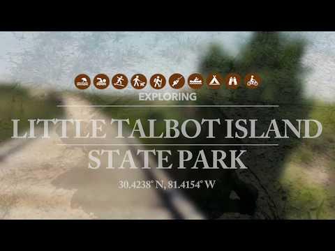 Exploring Northeast Florida's Little Talbot Island State Park
