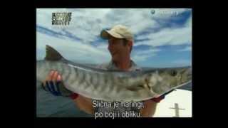 Robson Green Strastveni ribolovci HR prijevod