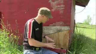 Raising Chickens: Moving Your Pullets / Chicks to Your Coop
