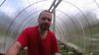 Самый простой капельный полив (полив по-нищебродски) The easiest drip irrigation