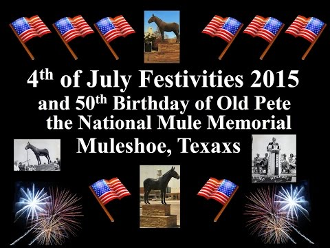 4th of July 2015 and 50th of National Mule Memorial in Muleshoe Texas