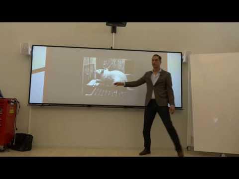 Kopie van Digital Studio Live Stream - MARCH 6TH 15:00 - Helping Organizations make better decisions