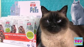 The Secret Life Of Pets Blind Bag Opening Toy Review | PSToyReviews